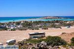 Elafonisi (Elafonissi) Kreta - Griekenland - Foto 63 - Foto van De Griekse Gids
