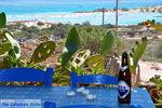 Elafonisi (Elafonissi) Kreta - Griekenland - Foto 173 - Foto van De Griekse Gids