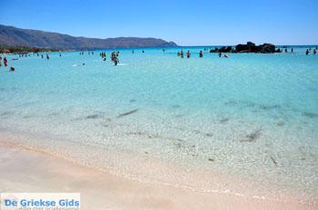 Elafonisi (Elafonissi) Kreta - Griekenland - Foto 23 - Foto van https://www.grieksegids.nl/fotos/elafonisi/normaal/elafonisi-kreta-023.jpg