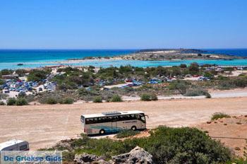 Elafonisi (Elafonissi) Kreta - Griekenland - Foto 61