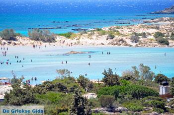 Elafonisi (Elafonissi) Kreta - Griekenland - Foto 75