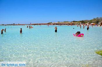 Elafonisi (Elafonissi) Kreta - Griekenland - Foto 107