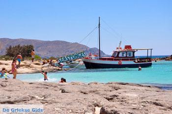 Elafonisi (Elafonissi) Kreta - Griekenland - Foto 116
