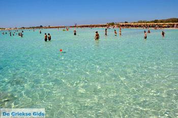 Elafonisi (Elafonissi) Kreta - Griekenland - Foto 118