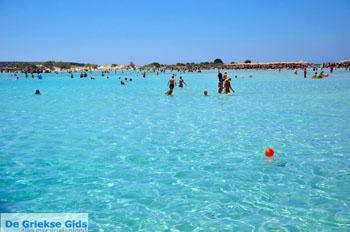 Elafonisi (Elafonissi) Kreta - Griekenland - Foto 129 - Foto van https://www.grieksegids.nl/fotos/elafonisi/normaal/elafonisi-kreta-129.jpg
