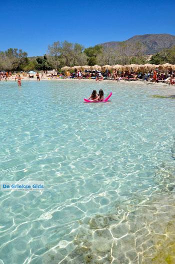 Elafonisi (Elafonissi) Kreta - Griekenland - Foto 132