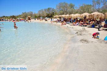 Elafonisi (Elafonissi) Kreta - Griekenland - Foto 138