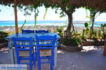 Elafonisi (Elafonissi) Kreta - Griekenland - Foto 163