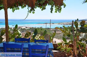 Elafonisi (Elafonissi) Kreta - Griechenland - Foto 171 - Foto von GriechenlandWeb.de
