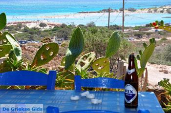 Elafonisi (Elafonissi) Kreta - Griekenland - Foto 173