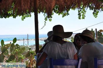Elafonisi (Elafonissi) Kreta - Griekenland - Foto 177