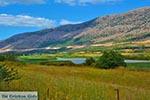 Route Agrinio - Amfilochia - Departement Etoloakarnania -  Foto 14 - Foto van De Griekse Gids
