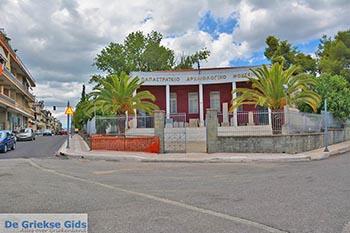 Agrinio - Departement Etoloakarnania -  Foto 7 - Foto von GriechenlandWeb.de