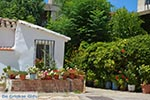 Etoliko - Departement Etoloakarnania -  Foto 24 - Foto van De Griekse Gids