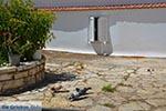Etoliko - Departement Etoloakarnania -  Foto 26 - Foto van De Griekse Gids