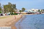 Eretria | Evia Griekenland | De Griekse Gids - foto 003 - Foto van De Griekse Gids