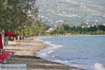 GriechenlandWeb.de Eretria | Evia Griechenland | GriechenlandWeb.de - foto 022 - Foto GriechenlandWeb.de
