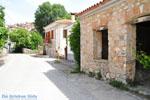 GriechenlandWeb.de Avlonari Euboea - Foto GriechenlandWeb.de