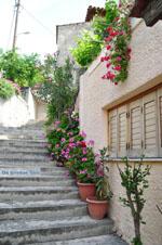 GriechenlandWeb.de Avlonari | Evia Griechenland | GriechenlandWeb.de - foto 005 - Foto GriechenlandWeb.de
