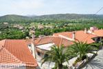 GriechenlandWeb.de Avlonari | Evia Griechenland | GriechenlandWeb.de - foto 016 - Foto GriechenlandWeb.de
