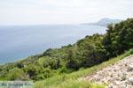 GriechenlandWeb.de Kymi | Evia Griechenland | GriechenlandWeb.de - foto 002 - Foto GriechenlandWeb.de