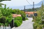 Kymi | Evia Griekenland | De Griekse Gids - foto 012 - Foto van De Griekse Gids