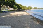 GriechenlandWeb.de Hotel Negroponte nabij Eretria | Evia Griechenland | GriechenlandWeb.de - foto 004 - Foto GriechenlandWeb.de