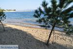 Hotel Negroponte nabij Eretria | Evia Griekenland | De Griekse Gids - foto 005 - Foto van De Griekse Gids