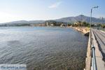 GriechenlandWeb.de Eretria | Evia Griechenland | GriechenlandWeb.de - foto 029 - Foto GriechenlandWeb.de