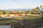 Eretria | Evia Griekenland | De Griekse Gids - foto 041 - Foto van De Griekse Gids