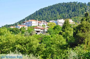 Ellinika Noord-Evia | Griekenland | De Griekse Gids foto 1 - Foto van De Griekse Gids