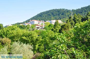 Ellinika Noord-Evia | Griekenland | De Griekse Gids foto 5 - Foto van De Griekse Gids