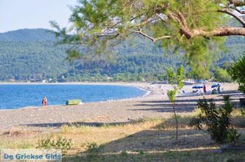 Psaropouli en Vassilika | Noord-Evia Griekenland | Foto 6 - Foto van De Griekse Gids