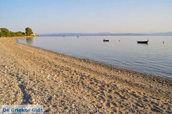 GriechenlandWeb.de Rovies Noord-Evia | Griechenland | GriechenlandWeb.de foto 4 - Foto GriechenlandWeb.de