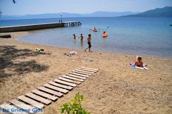 GriechenlandWeb.de Aghios Nikolaos Aedipsos   Noord-Evia   GriechenlandWeb.de foto 8 - Foto GriechenlandWeb.de