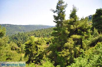 Mooie Natuur Noord-Evia | Griekenland | De Griekse Gids foto 2 - Foto van De Griekse Gids