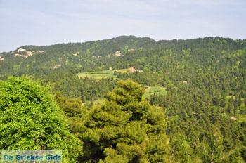 Mooie Natuur Noord-Evia | Griekenland | De Griekse Gids foto 4 - Foto van De Griekse Gids
