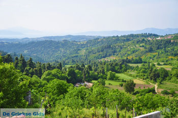 Mooie Natuur Noord-Evia | Griekenland | De Griekse Gids foto 6 - Foto van De Griekse Gids