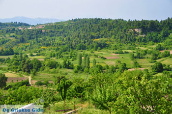 Mooie Natuur Noord-Evia | Griekenland | De Griekse Gids foto 7 - Foto van De Griekse Gids