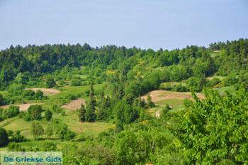 Mooie Natuur Noord-Evia | Griekenland | De Griekse Gids foto 8 - Foto van De Griekse Gids