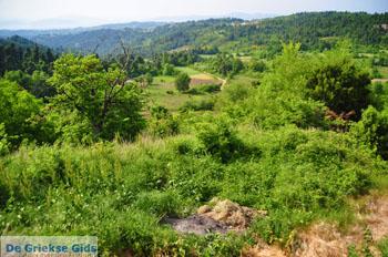 Mooie Natuur Noord-Evia | Griekenland | De Griekse Gids foto 9 - Foto van De Griekse Gids