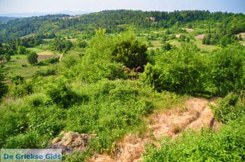 Mooie Natuur Noord-Evia | Griekenland | De Griekse Gids foto 10 - Foto van De Griekse Gids
