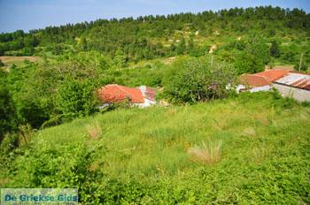 Mooie Natuur Noord-Evia | Griekenland | De Griekse Gids foto 12 - Foto van De Griekse Gids