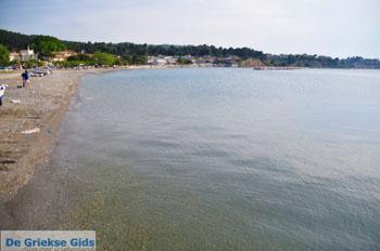 Pefki | Noord-Evia Griekenland | De Griekse Gids foto 1 - Foto van De Griekse Gids