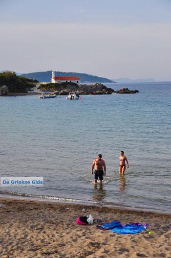 Aghios Nikolaos bij Ellinika | Noord-Evia | De Griekse Gids foto 3 - Foto van De Griekse Gids