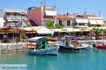Orei (Oreoi) ) Noord-Evia Griechenland | Foto 8 - Foto von GriechenlandWeb.de