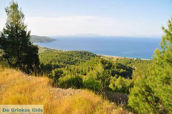 Noordoostkust Evia | Griekenland | Foto 1 - Foto van De Griekse Gids