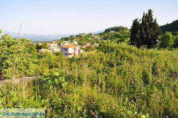 Agia Anna Noord-Evia | Griekenland 4 - Foto van De Griekse Gids