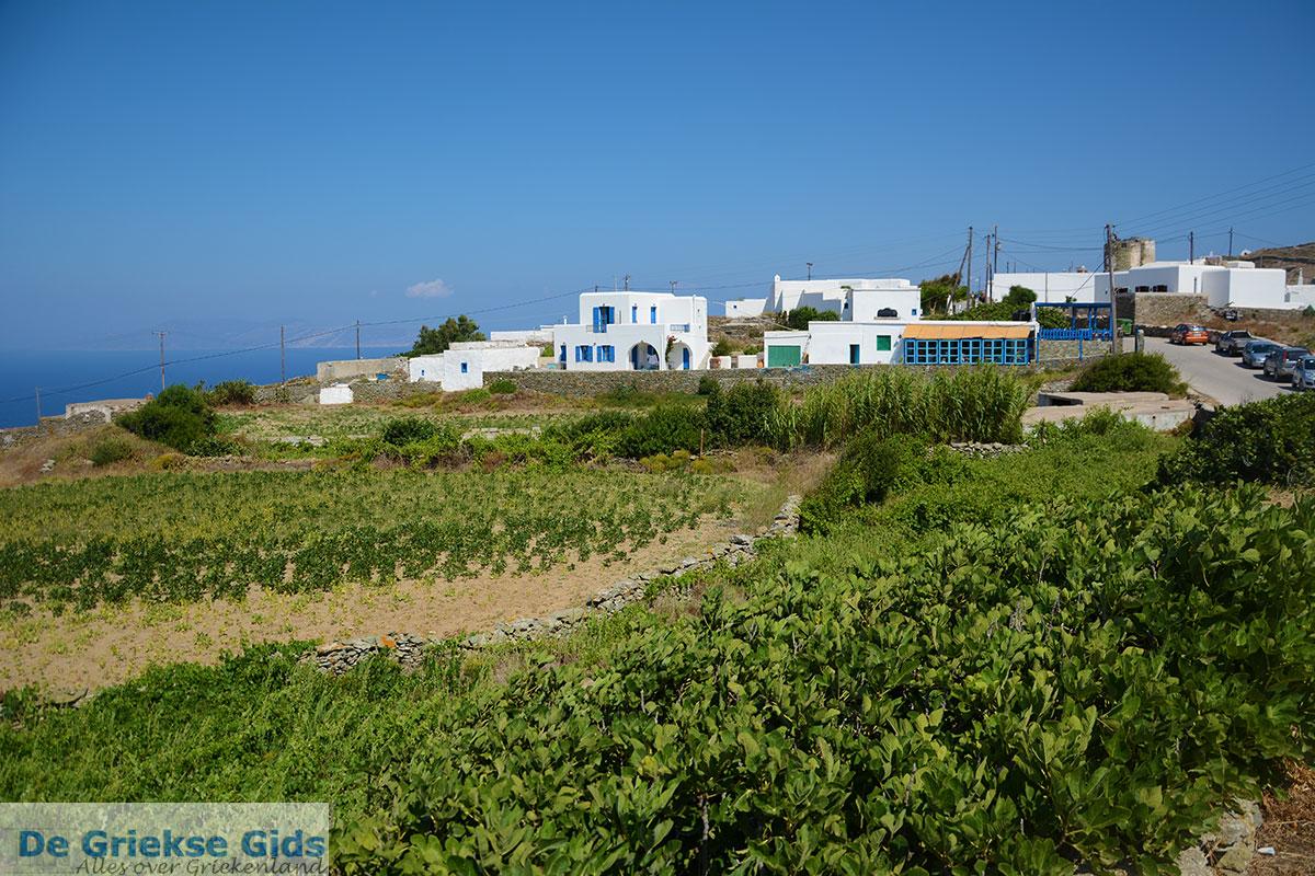 foto Ano Meria Folegandros - Eiland Folegandros - Cycladen - Foto 209