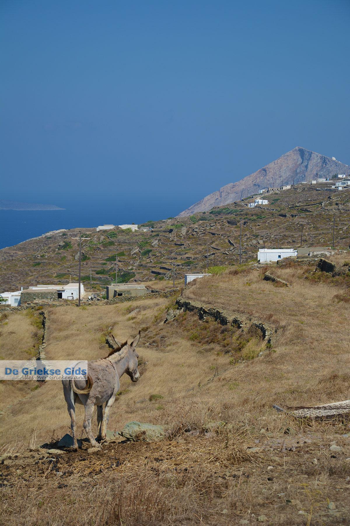 foto Ano Meria Folegandros - Eiland Folegandros - Cycladen - Foto 218